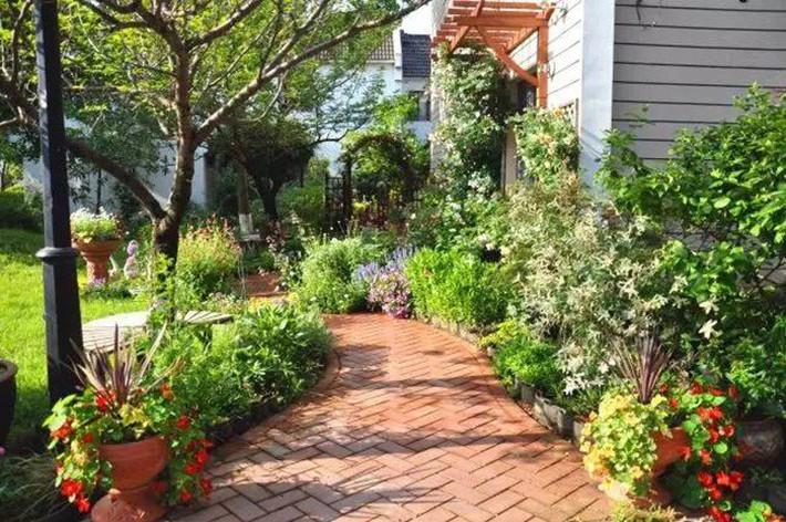 Cuộc sống trọn vẹn niềm vui trong khu vườn nhỏ dịu dàng nét xuân của cô giáo tiếng Anh - Ảnh 8.
