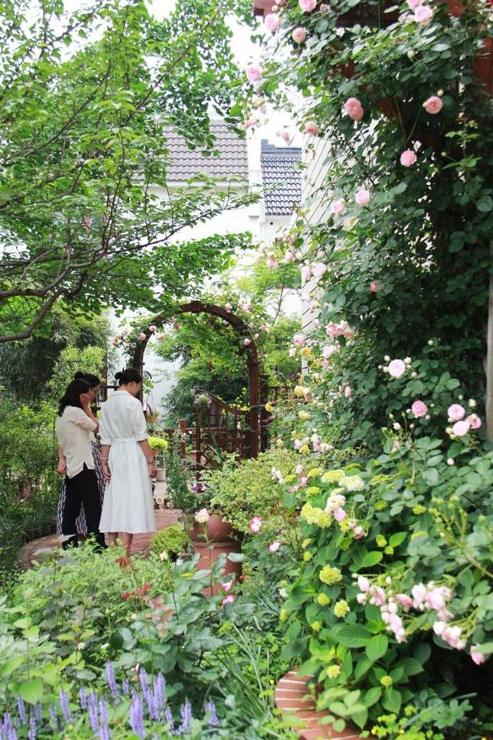 Cuộc sống trọn vẹn niềm vui trong khu vườn nhỏ dịu dàng nét xuân của cô giáo tiếng Anh - Ảnh 5.