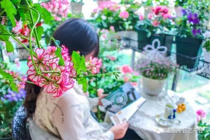Ban công chỉ rộng vỏn vẹn 7m² nhưng tràn ngập hoa đẹp như cổ tích của bà mẹ bỉm sữa 2 con - Ảnh 3.