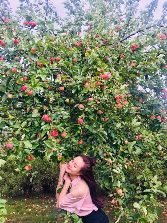 Ngất ngây trước vẻ đẹp biệt thự ngập tràn thiên nhiên của nữ ca sĩ Vy Oanh - Ảnh 22.