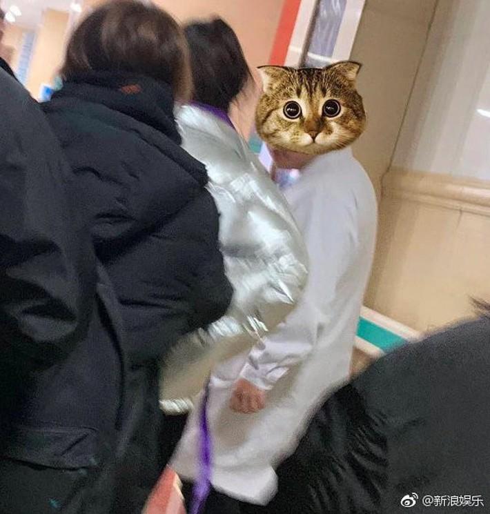 Angela Baby bất ngờ nhập viện khi đang quay show truyền hình Running Man phiên bản Trung - Ảnh 3.