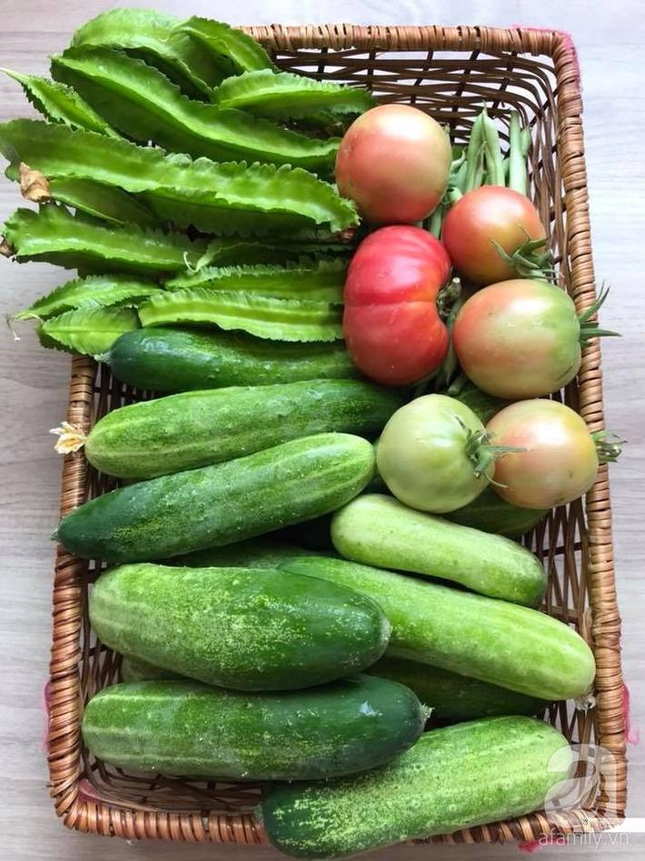 Khu vườn xanh mướt một màu như trang trại rau quả sạch mini của mẹ đảm ở Sài Gòn - Ảnh 14.