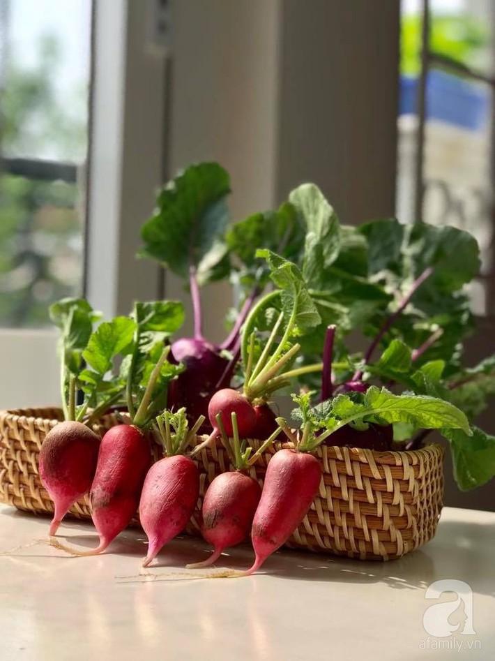 Khu vườn xanh mướt một màu như trang trại rau quả sạch mini của mẹ đảm ở Sài Gòn - Ảnh 10.