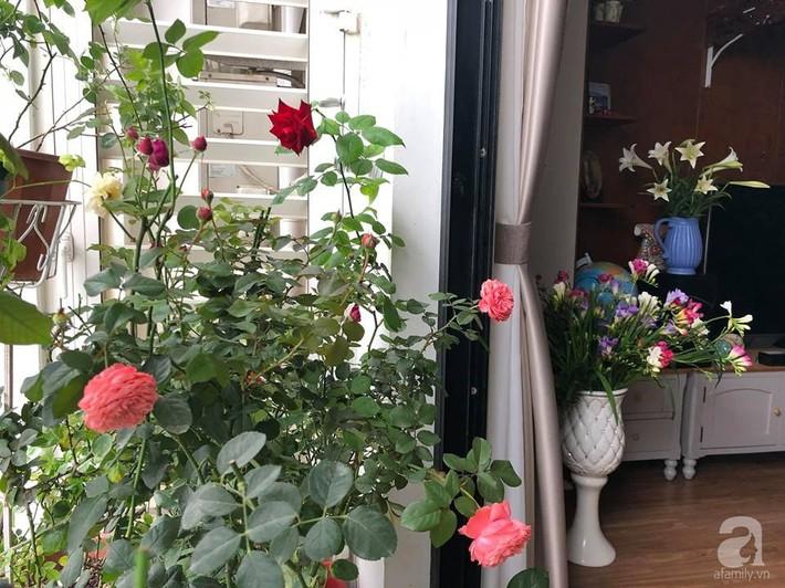 Ban công chỉ 5m² nhưng bốn mùa nở hoa và tổ ấm tràn ngập hương thơm của mẹ Hà Thành - Ảnh 5.