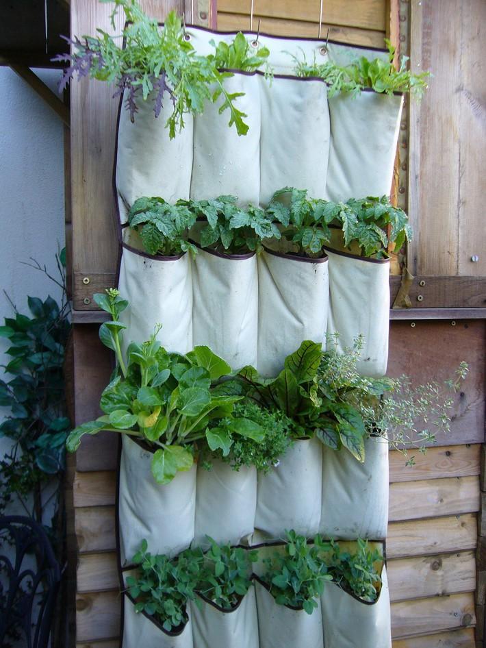 12 ý tưởng thiết kế vườn đẹp mà bạn có thể tham khảo cho nhà phố hiện đại của mình - Ảnh 3.