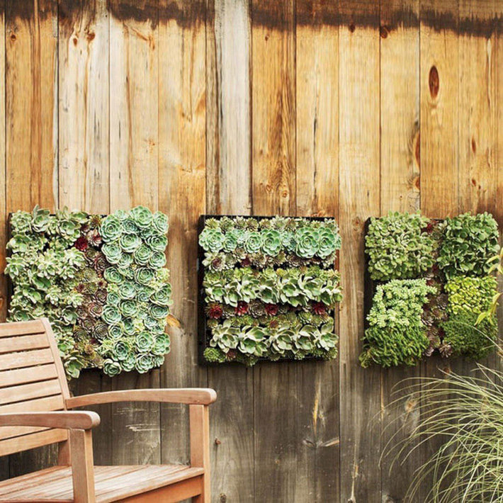 12 ý tưởng thiết kế vườn đẹp mà bạn có thể tham khảo cho nhà phố hiện đại của mình - Ảnh 4.
