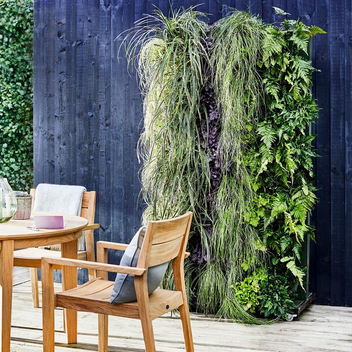 12 ý tưởng thiết kế vườn đẹp mà bạn có thể tham khảo cho nhà phố hiện đại của mình - Ảnh 9.