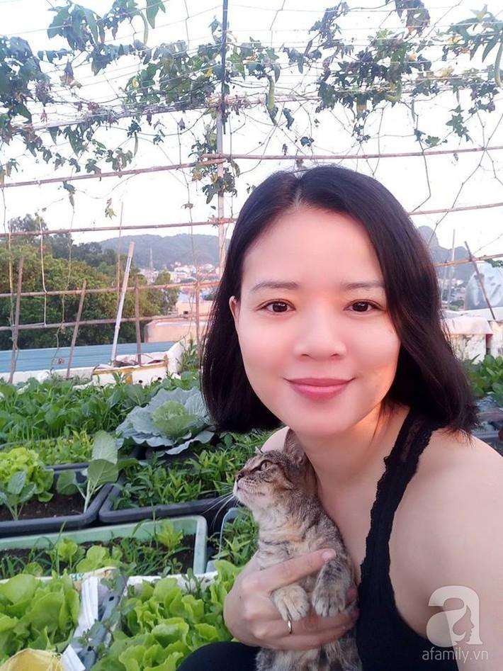Mẹ đảm ở Quảng Ninh chia sẻ kinh nghiệm 10 năm trồng rau trên sân thượng rộng 75m²  - Ảnh 6.