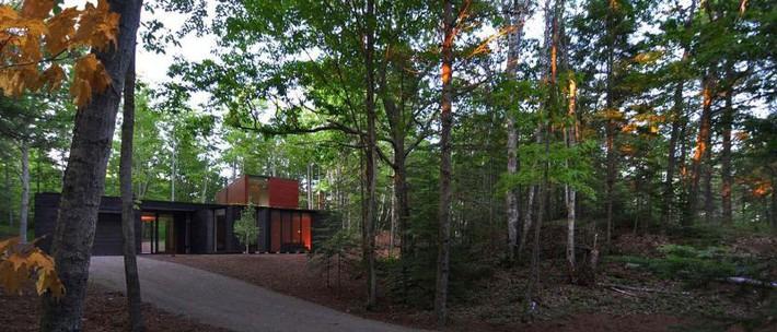 Ấn tượng với ngôi nhà bằng gỗ và kính của cặp vợ chồng thiết kế đồ họa - Ảnh 1.