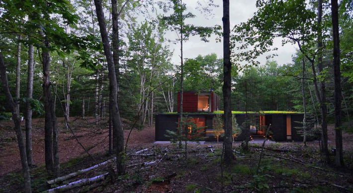 Ấn tượng với ngôi nhà bằng gỗ và kính của cặp vợ chồng thiết kế đồ họa - Ảnh 11.