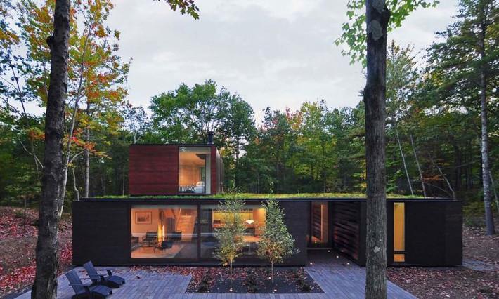 Ấn tượng với ngôi nhà bằng gỗ và kính của cặp vợ chồng thiết kế đồ họa - Ảnh 4.