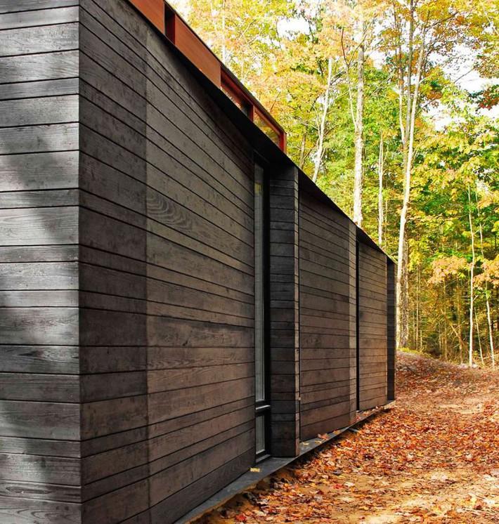 Ấn tượng với ngôi nhà bằng gỗ và kính của cặp vợ chồng thiết kế đồ họa - Ảnh 5.