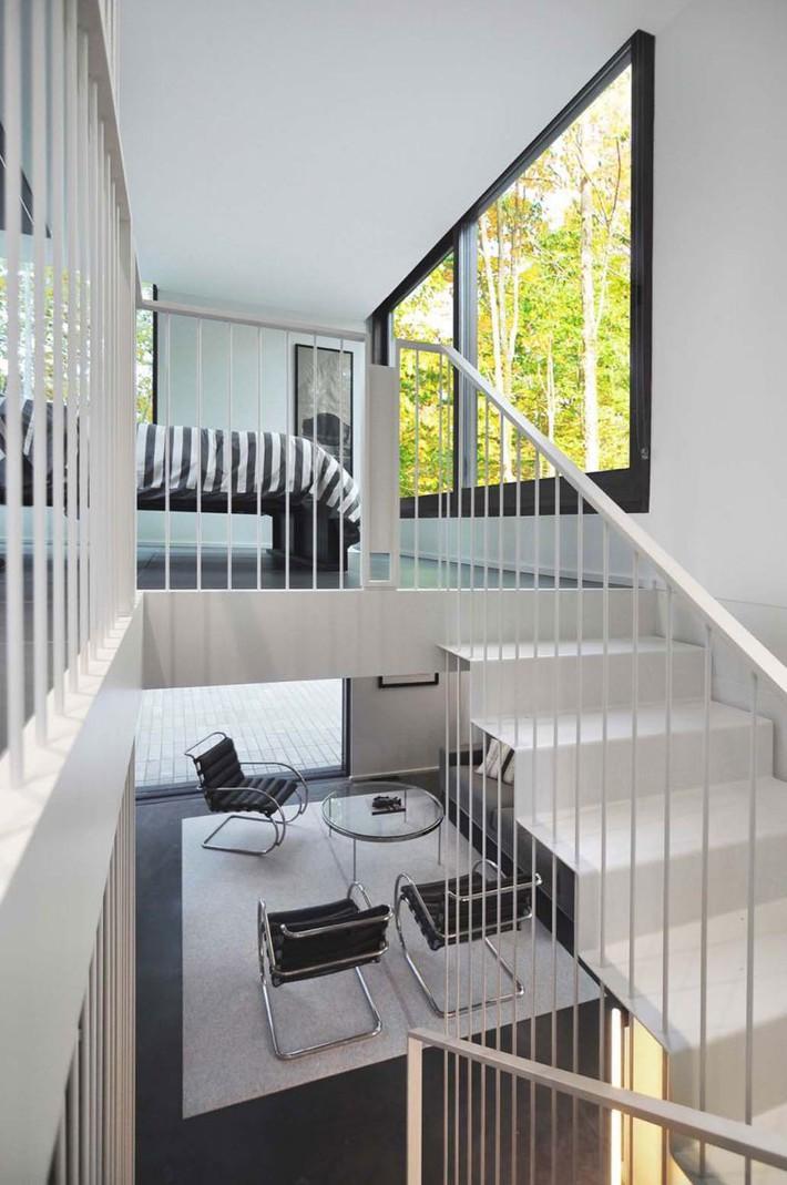 Ấn tượng với ngôi nhà bằng gỗ và kính của cặp vợ chồng thiết kế đồ họa - Ảnh 9.