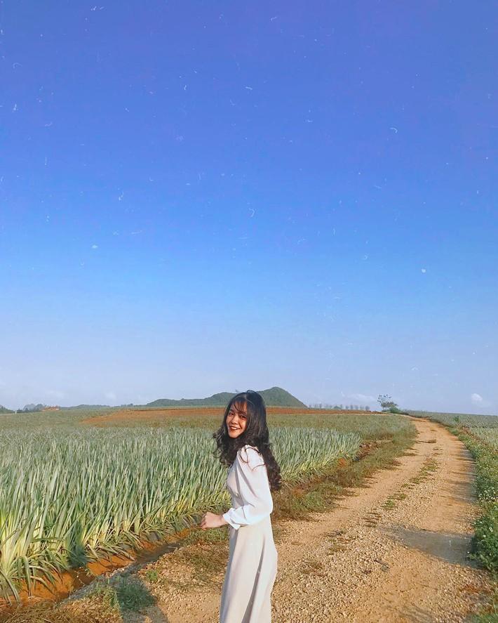 Đồi dứa xanh không xa Hà Nội thích hợp cho nhiều gia đình đi du lịch dịp lễ tới: Nhiều góc sống ảo, dứa ngọt lịm tim - Ảnh 9.