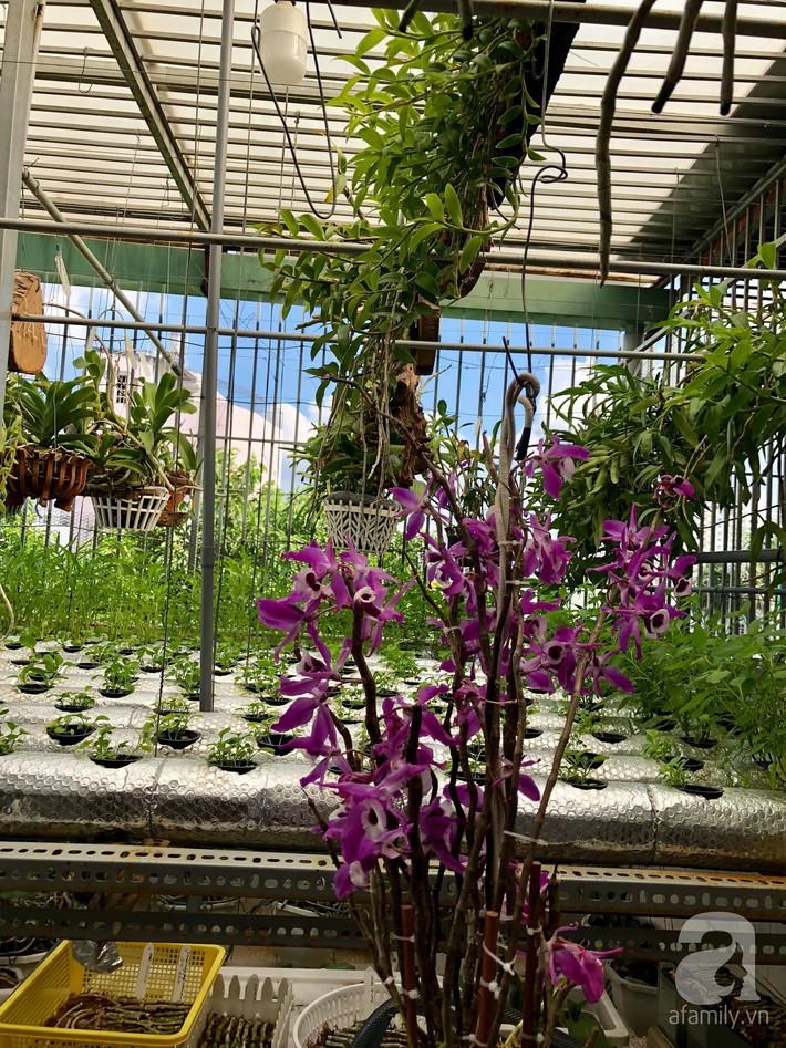 Khu vườn sân thượng xanh mướt rau sạch của người đàn ông chăm chỉ trồng cho gia đình ở Sài Gòn - Ảnh 8.