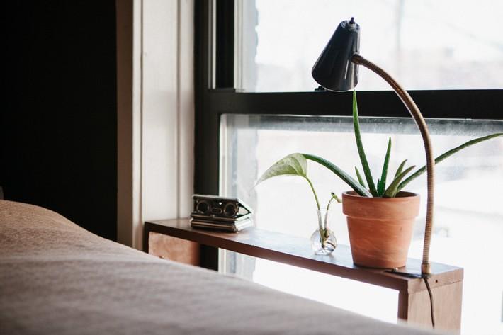 7 cách làm đẹp hữu hiệu cho cửa sổ nhà bạn - Ảnh 3.