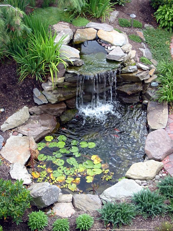 5 ý tưởng để nâng cấp sân vườn nhà bạn trong mùa hè này - Ảnh 5.