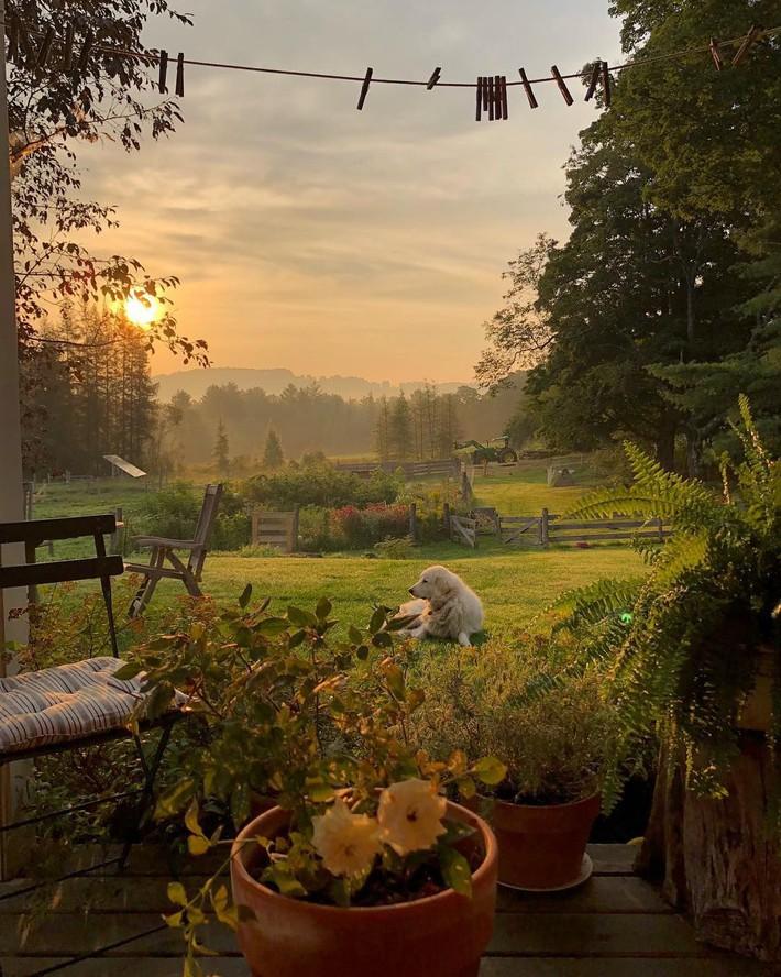 Cuộc sống bình yên, tự tại trong ngôi nhà ngập tràn nắng gió và hương thơm vạn người mơ ước - Ảnh 5.
