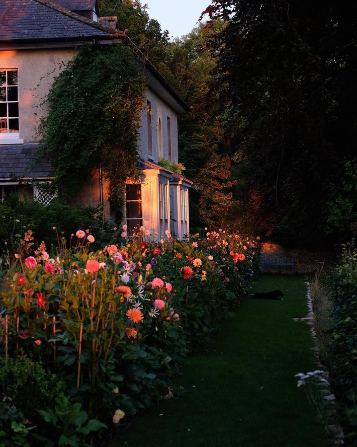 Cuộc sống bình yên, tự tại trong ngôi nhà ngập tràn nắng gió và hương thơm vạn người mơ ước - Ảnh 13.