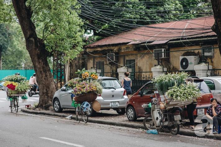 Tháng 4 về, Hà Nội lại dịu dàng những gánh loa kèn trắng tinh khôi, thơm nồng nàn khắp các góc phố - Ảnh 5.