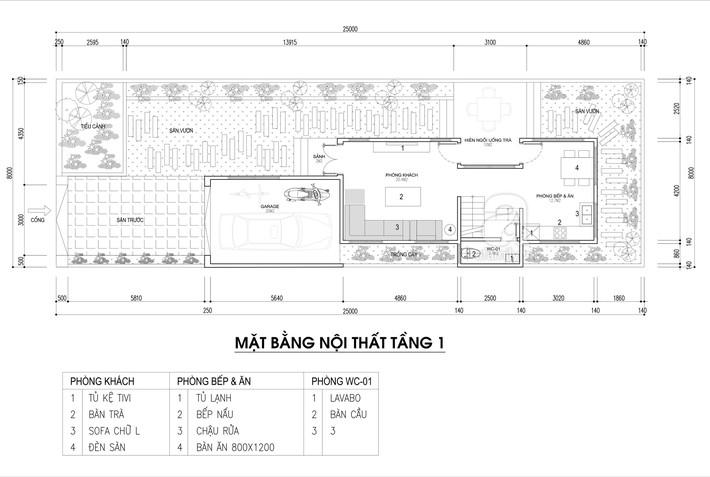 Tư vấn thiết kế nhà phố cho gia đình 4 người với rất nhiều mảng xanh thiên nhiên  - Ảnh 1.