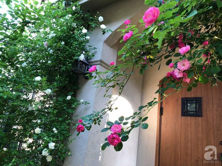 Khu vườn hoa hồng trước nhà đẹp như truyện cổ tích của người đàn ông Việt ở Nhật - Ảnh 1.