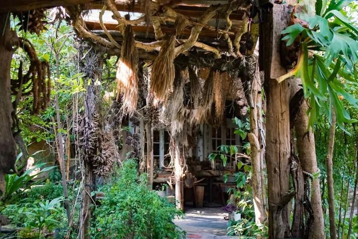 Ngôi nhà tồn tại bền vững với thiên nhiên sau 30 năm bất chấp thiên tai nhờ những bí quyết tuyệt vời của gia chủ  - Ảnh 3.
