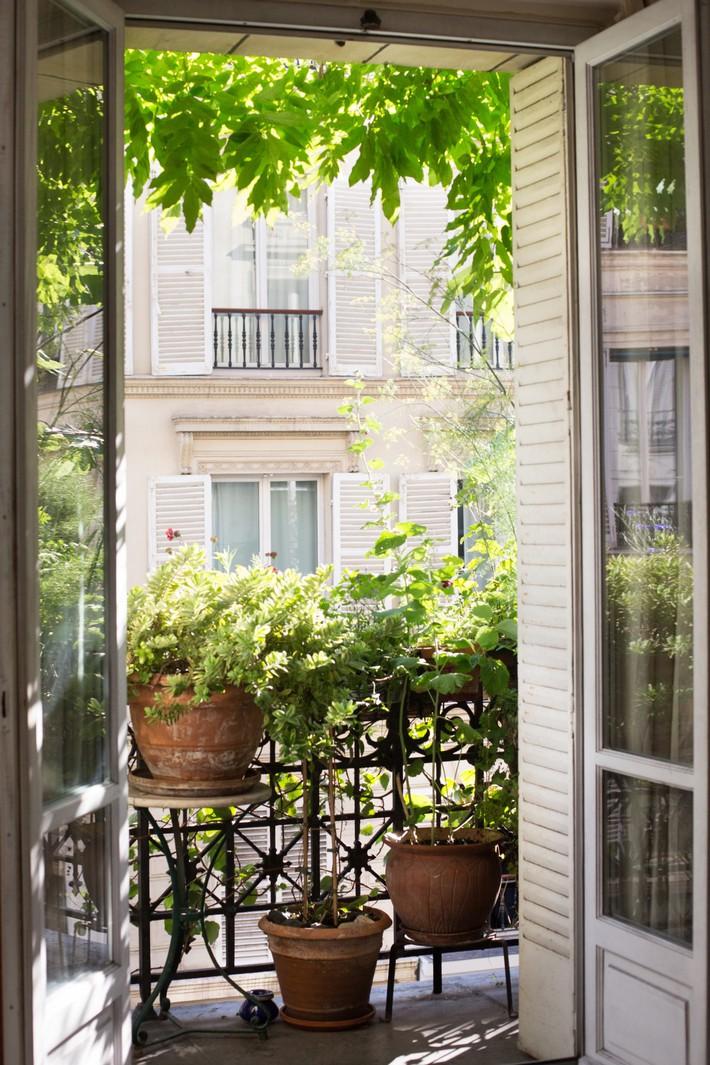 Gợi ý tạo vườn xanh ở ban công với những vật liệu thân thiện với môi trường bất chấp diện tích lớn nhỏ - Ảnh 11.