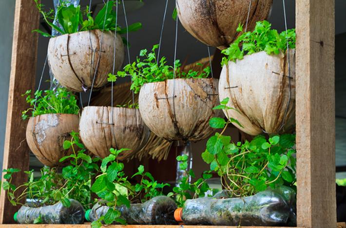 Gợi ý tạo vườn xanh ở ban công với những vật liệu thân thiện với môi trường bất chấp diện tích lớn nhỏ - Ảnh 12.
