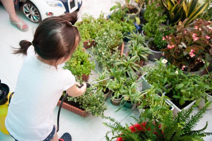 Từ những chậu hoa bị bỏ đi, ca sĩ Phương Vy Idol đã tạo nên khu vườn xanh tốt tại nhà - Ảnh 7.