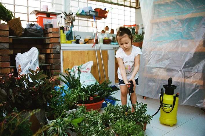 Từ những chậu hoa bị bỏ đi, ca sĩ Phương Vy Idol đã tạo nên khu vườn xanh tốt tại nhà - Ảnh 6.