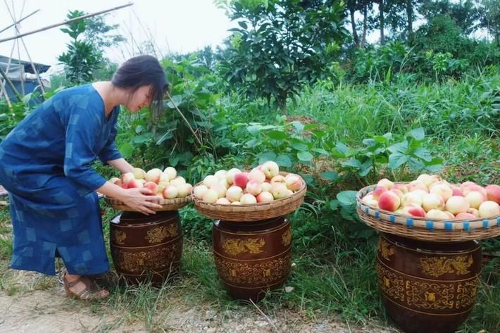 Nữ giám đốc doanh nghiệp quyết định sống cho bản thân sau 40 tuổi bằng cách nghỉ việc về quê trồng hoa, làm thơ - Ảnh 13.