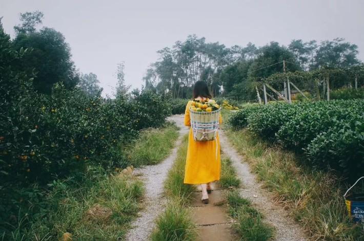 Nữ giám đốc doanh nghiệp quyết định sống cho bản thân sau 40 tuổi bằng cách nghỉ việc về quê trồng hoa, làm thơ - Ảnh 16.