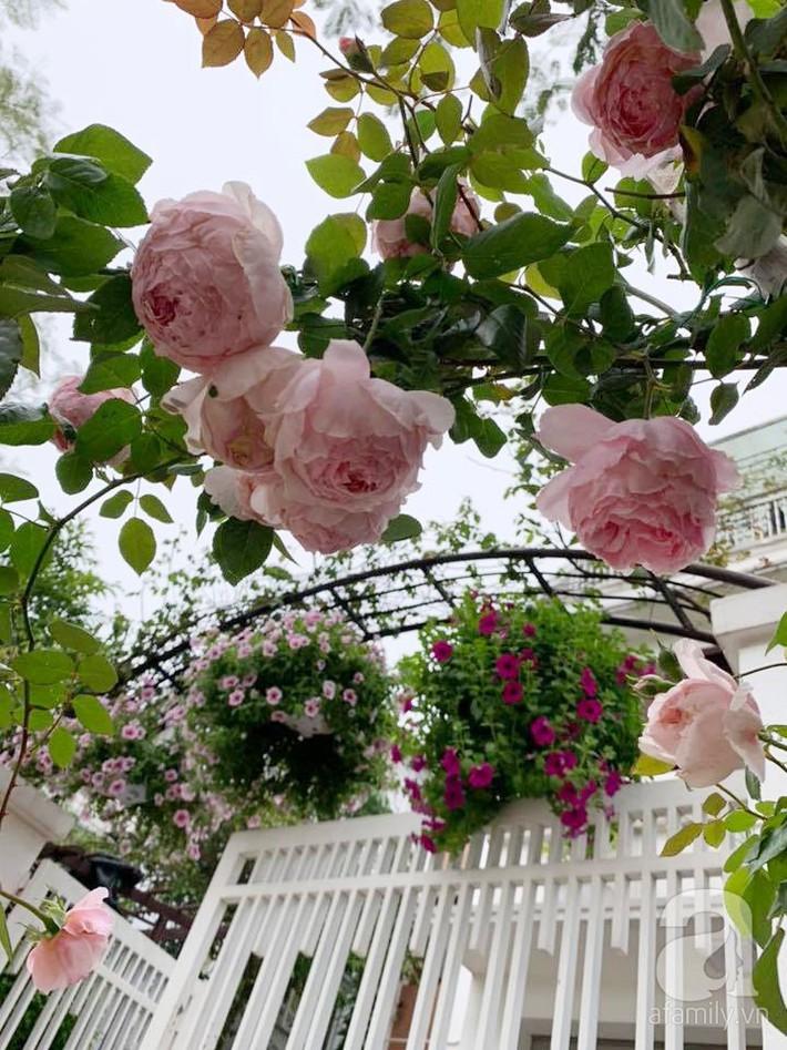 Cuộc sống bình yên của người đàn ông trong ngôi nhà phủ kín hoa hồng ở Hà Nội - Ảnh 25.