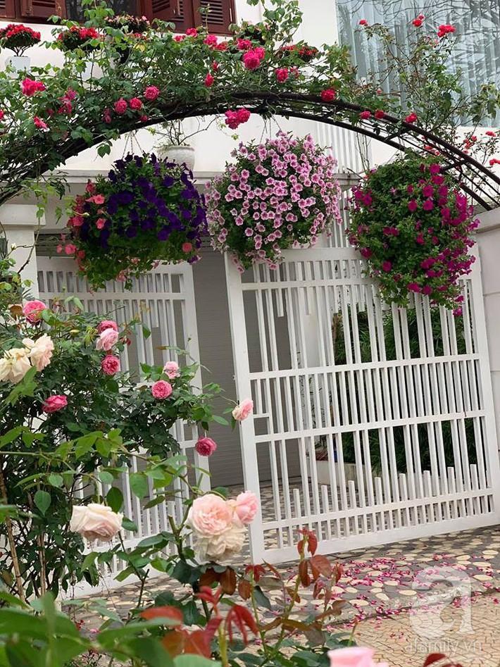 Cuộc sống bình yên của người đàn ông trong ngôi nhà phủ kín hoa hồng ở Hà Nội - Ảnh 30.