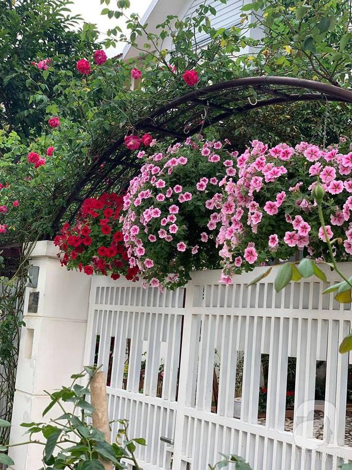 Cuộc sống bình yên của người đàn ông trong ngôi nhà phủ kín hoa hồng ở Hà Nội - Ảnh 28.