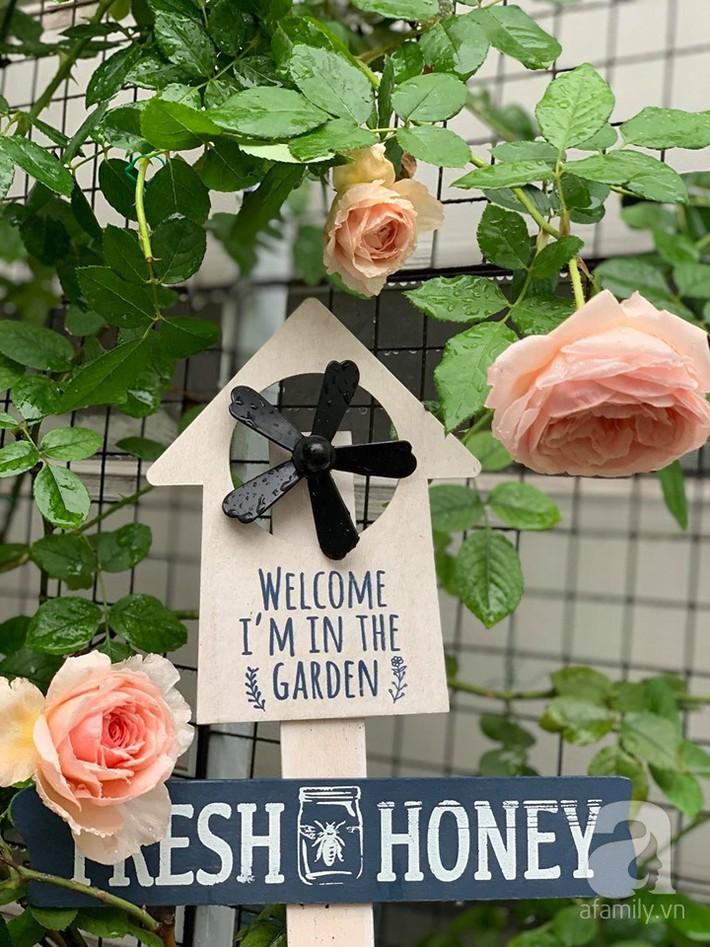 Cuộc sống bình yên của người đàn ông trong ngôi nhà phủ kín hoa hồng ở Hà Nội - Ảnh 1.