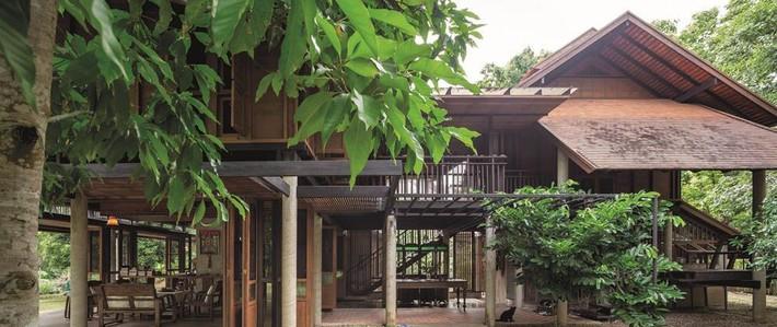 Ngôi nhà gỗ bất chấp nắng nóng, chỉ có gió mát và ánh sáng ngập tràn giữa rừng cây xanh - Ảnh 7.