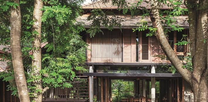 Ngôi nhà gỗ bất chấp nắng nóng, chỉ có gió mát và ánh sáng ngập tràn giữa rừng cây xanh - Ảnh 1.