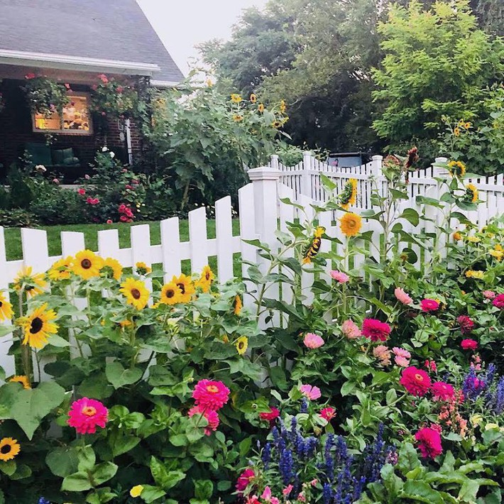 Cuộc sống đẹp như cổ tích của cặp vợ chồng cùng 4 con trai bên mảnh vườn đầy hoa và rau đẹp như cổ tích - Ảnh 15.