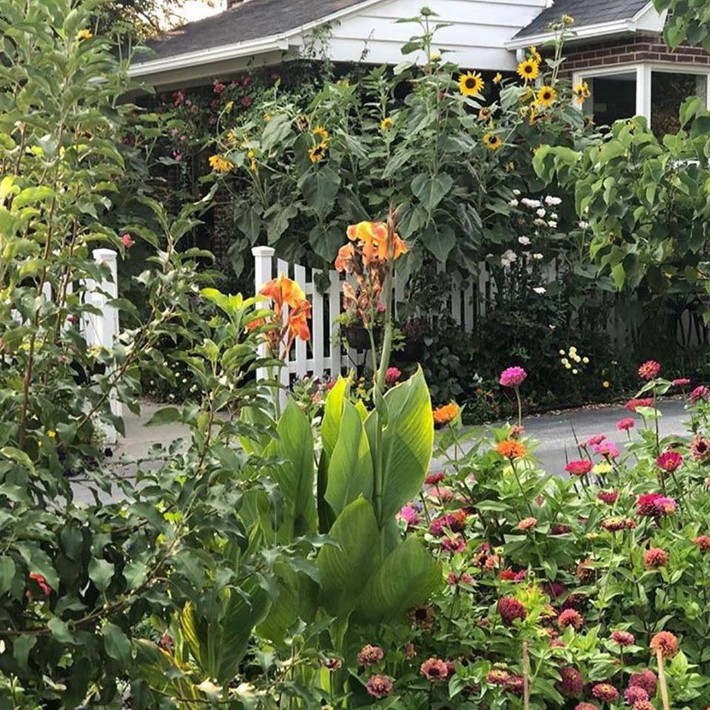 Cuộc sống đẹp như cổ tích của cặp vợ chồng cùng 4 con trai bên mảnh vườn đầy hoa và rau đẹp như cổ tích - Ảnh 14.