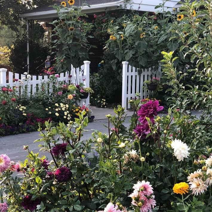 Cuộc sống đẹp như cổ tích của cặp vợ chồng cùng 4 con trai bên mảnh vườn đầy hoa và rau đẹp như cổ tích - Ảnh 13.