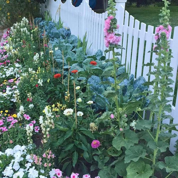 Cuộc sống đẹp như cổ tích của cặp vợ chồng cùng 4 con trai bên mảnh vườn đầy hoa và rau đẹp như cổ tích - Ảnh 7.