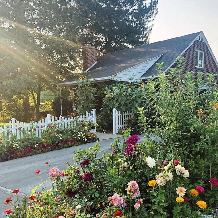 Cuộc sống đẹp như cổ tích của cặp vợ chồng cùng 4 con trai bên mảnh vườn đầy hoa và rau đẹp như cổ tích - Ảnh 1.