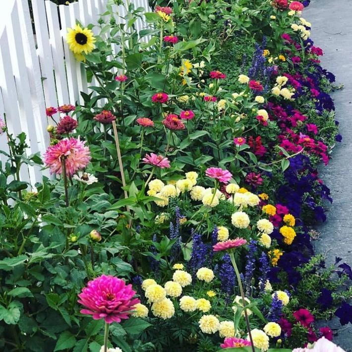 Cuộc sống đẹp như cổ tích của cặp vợ chồng cùng 4 con trai bên mảnh vườn đầy hoa và rau đẹp như cổ tích - Ảnh 3.