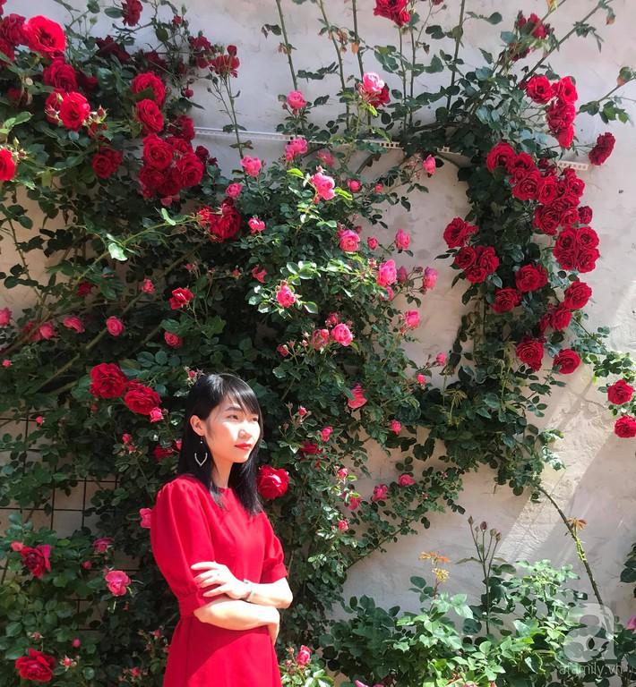 Giàn hồng nghìn bông đẹp như thiên đường hàng ngày được trồng chăm sóc để dành tặng vợ - Ảnh 18.