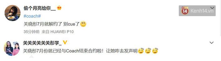 Sau Versace, lại đến Coach dính phốt tại Trung Quốc: Liu Wen lo sốt vó, fan Quan Hiểu Đồng lại mừng húm - Ảnh 6.