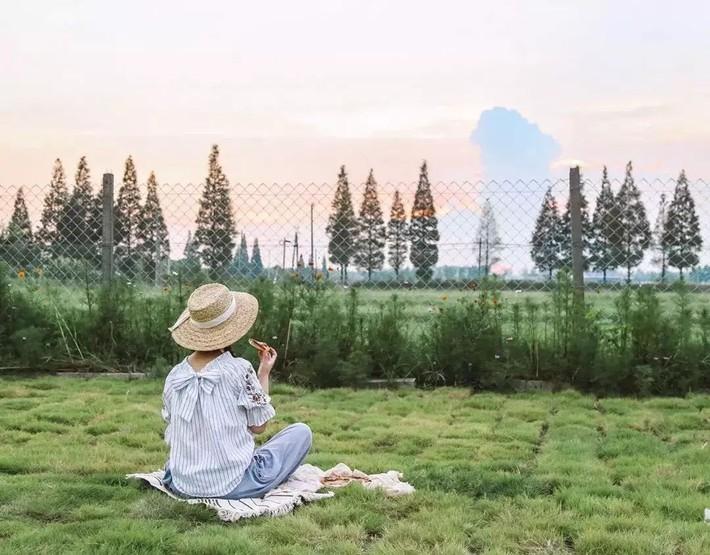 Mạnh mẽ đưa ra quyết định bỏ phố về quê, cô gái 9x đã đem lại những ngày thảnh thơi cho cha mẹ bên khu vườn rộng 6000m² - Ảnh 17.