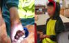 Xôn xao hình ảnh bé trai bị chó đuổi cắn vì mặc bộ đồ khủng long đang được cả trẻ con lẫn người lớn thích mê