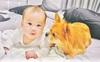 Bị phản đối gay gắt chuyện nuôi chó khi nhà có trẻ nhỏ, mẹ 9x chỉ ra SAI LẦM CỦA NGƯỜI NUÔI khiến thú cưng